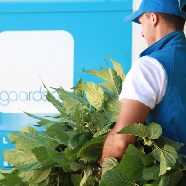 L entreprise gaarden recrute 60 jardiniers dans 5 grandes for Jardiniers paysagistes